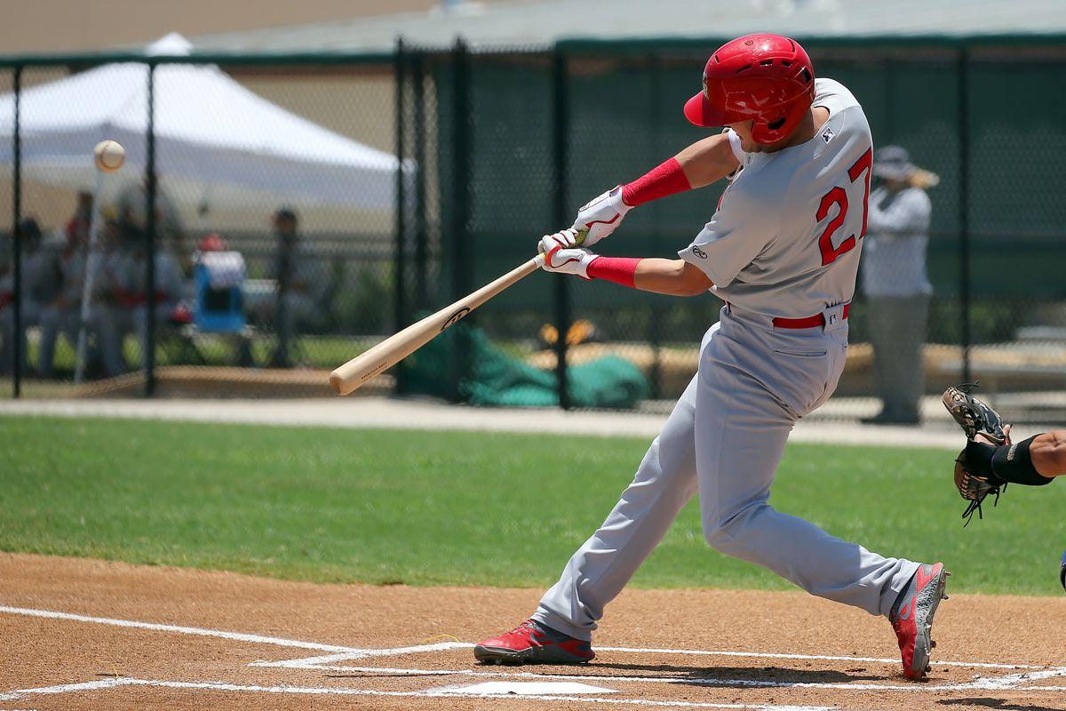 MiLB: JUN 23 Florida State League - Cardinals at Blue Jays