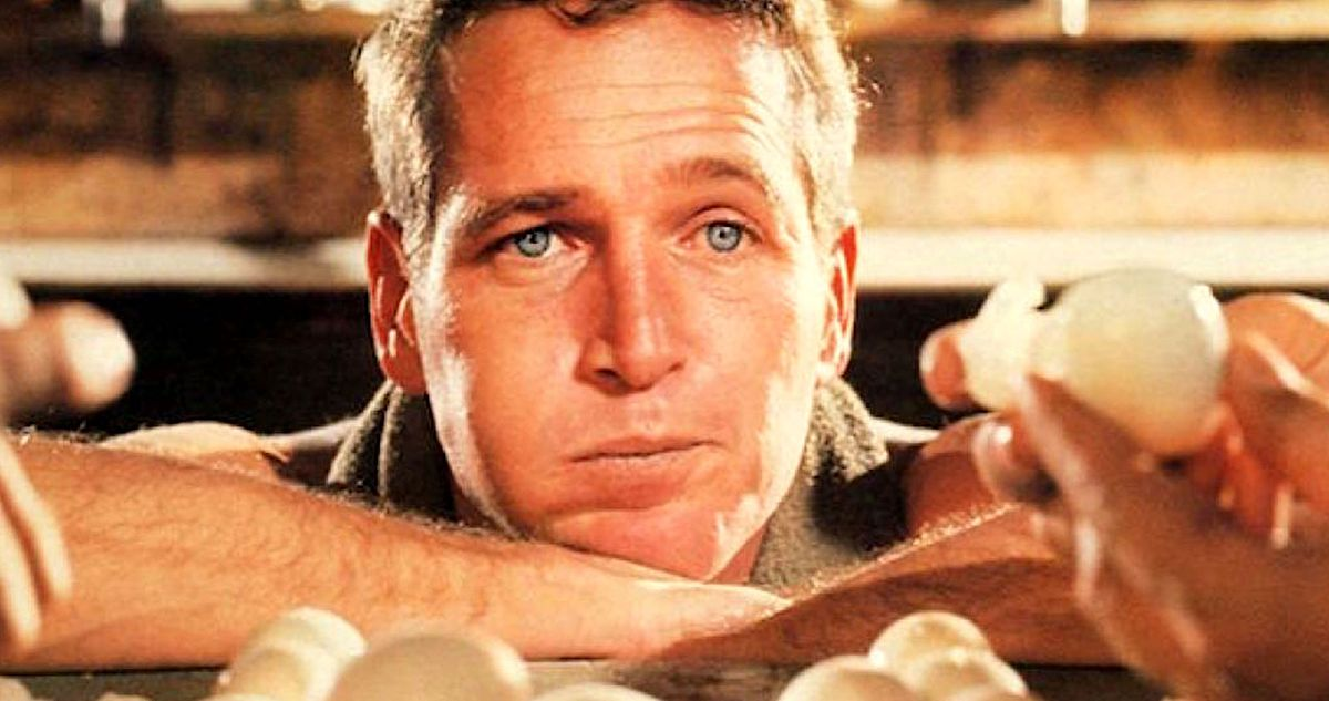 Paul Newman eats his way through a pile of eggs in 1967's Cool Hand Luke