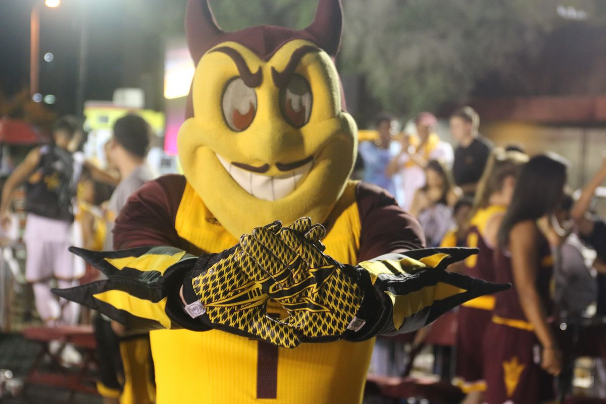 Sparky and his Gloves