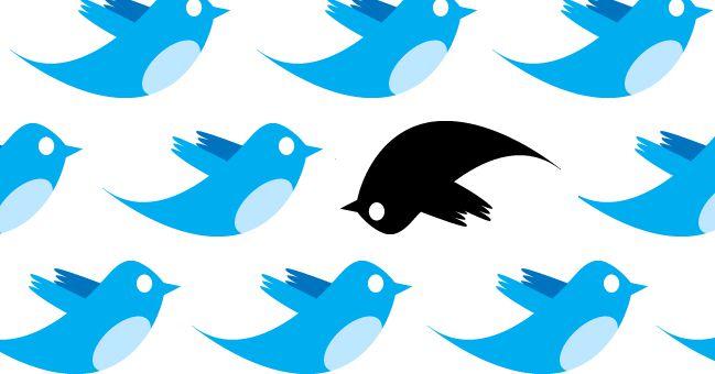 Social media bias lawsuits keep failing in court