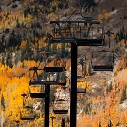 Alta's Sunnyside lift is backdropped by fall foliage on Thursday, Oct. 7, 2021.