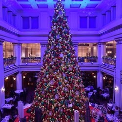 Macys Christmas Tree.Macy S Holiday Windows Great Tree Lighting At State Street