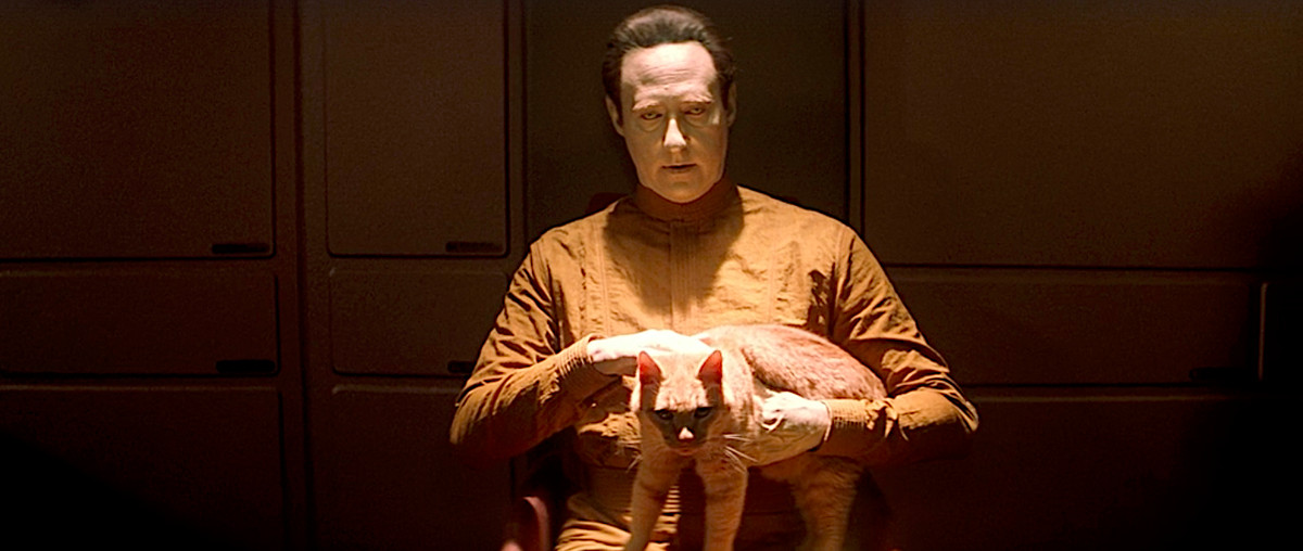 Yellow-skinned android Data, played by Brent Spiner, sits under a harsh overhead light, staring into the camera and petting his yellow tabby cat Spot, in Star Trek: Nemesis.