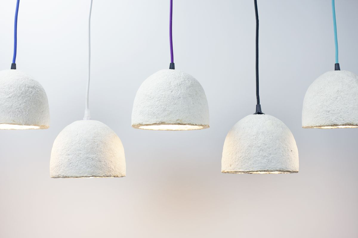 Grow your own lamp out of mushrooms and hemp the verge pendant lamp ecovative aloadofball