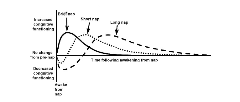 A graph showing the effects of various nap lengths.