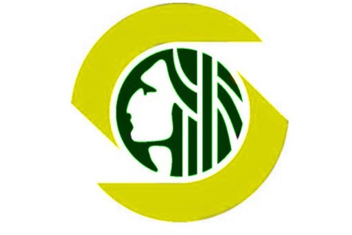 City of Seattle emblem as Green and Gold