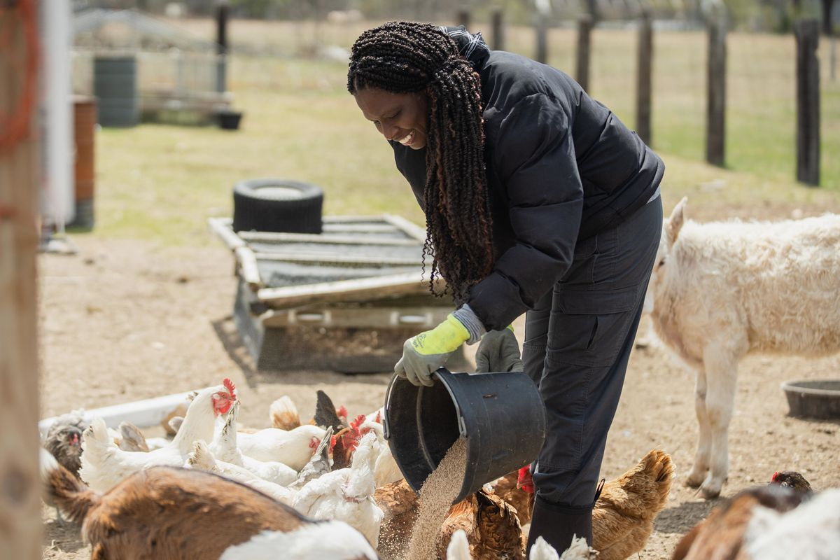 Johari Cole-Kweli moved to Pembroke inspired by the area's history of Black farmers practicing sustainable agriculture.