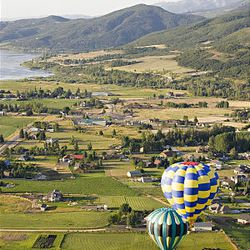 """Balloons hover near Wolf Creek Resort in Weber County on Friday during the 15th annual Ogden Valley Balloon Festival in Eden, which runs through Sunday. Each evening at the festival field there will be a live concert with BBQ dinner offered for purchase. The popular """"Balloon Glow"""" will take place Saturday evening at dusk."""