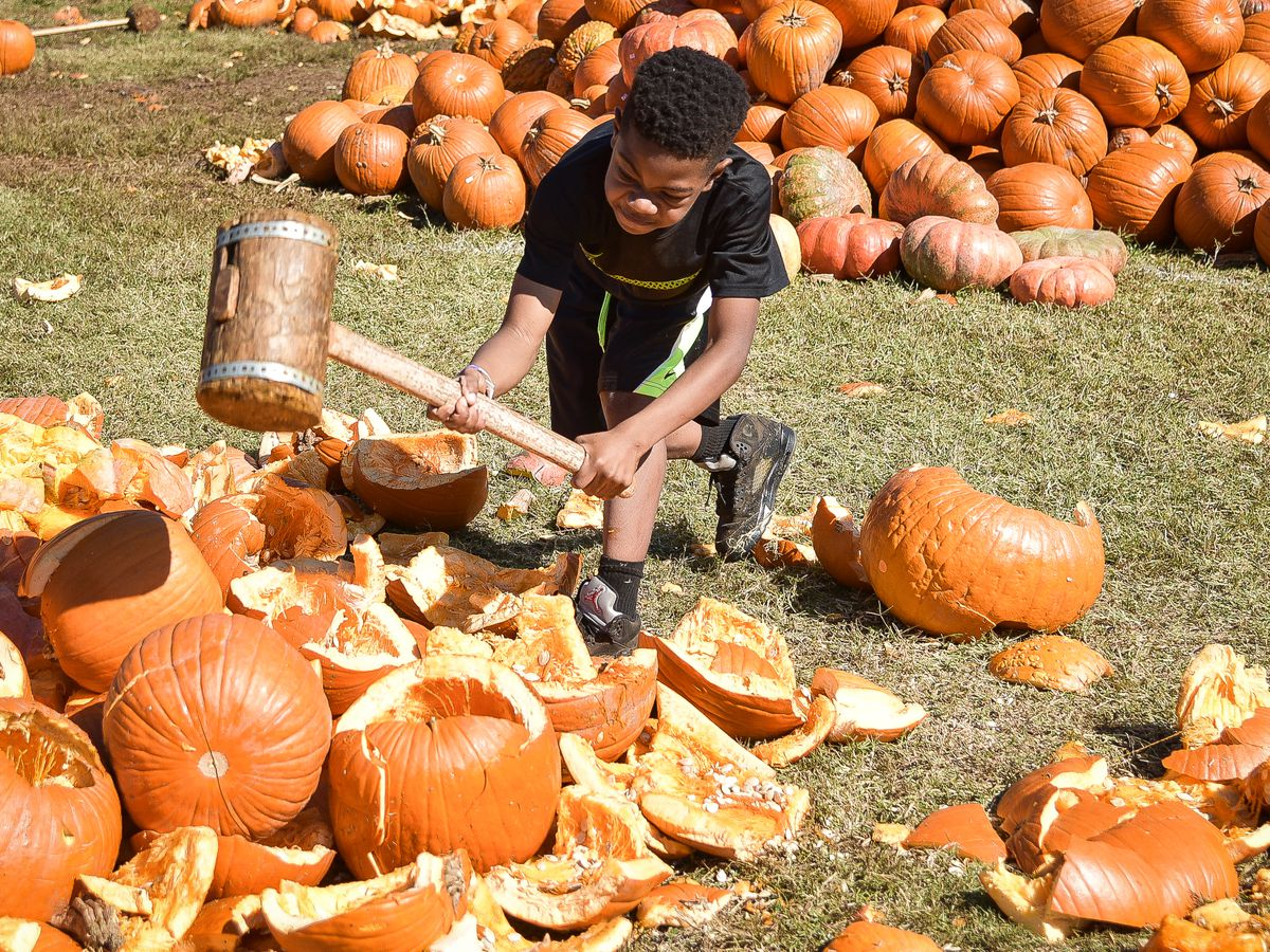 A child holds a mallet over a pile of broken and smashed orange pumpkins. Behind him are a pile of pumpkins.
