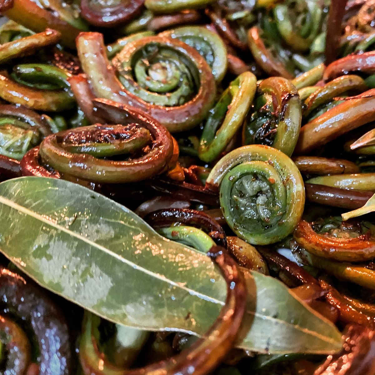 An early spring dish of fiddleheads at Cafe Ohlone
