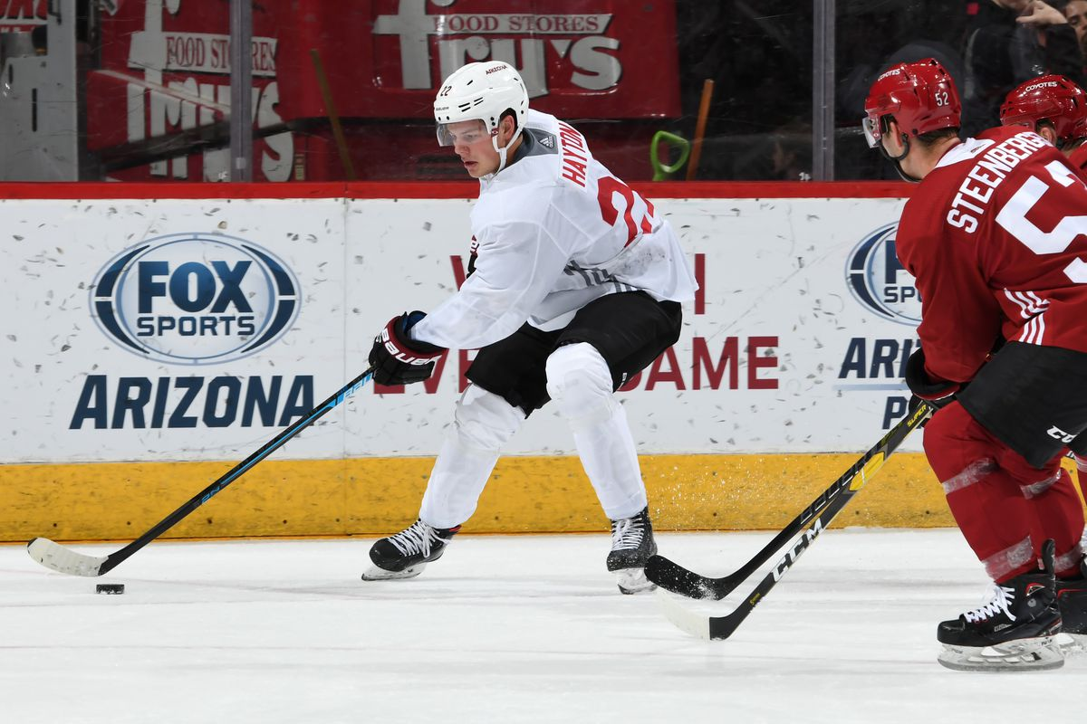 Arizona Coyotes Rookie Red and White Scrimmage