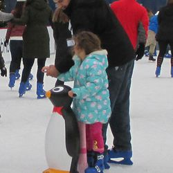 Now, this is what I need. If they have a five-foot version of that penguin, I might consider trying the ice myself