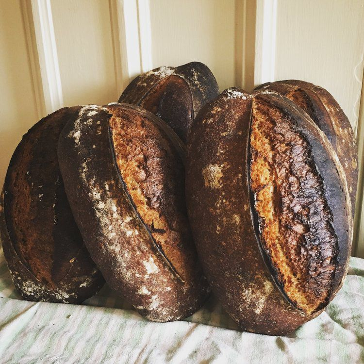 5 dark brown loaves of bread propped up on end and leaning against a wall on a cloth-covered table