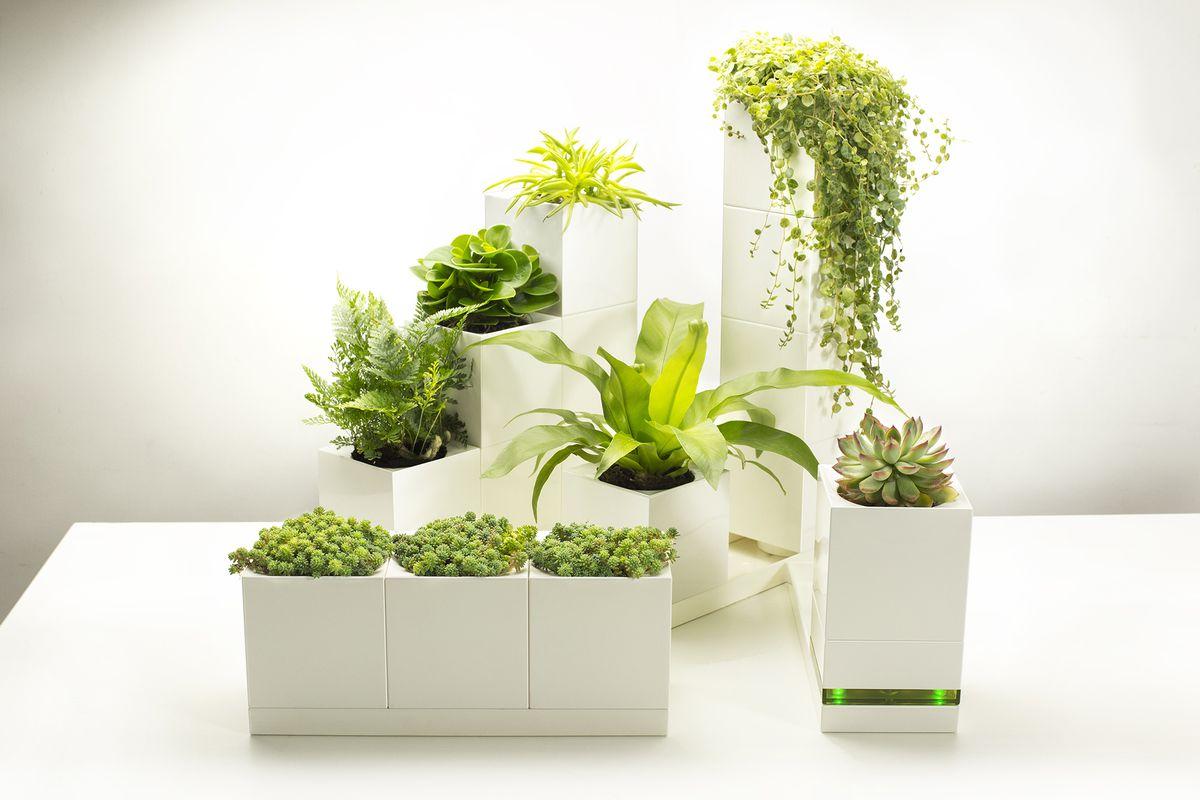 modular indoor planters