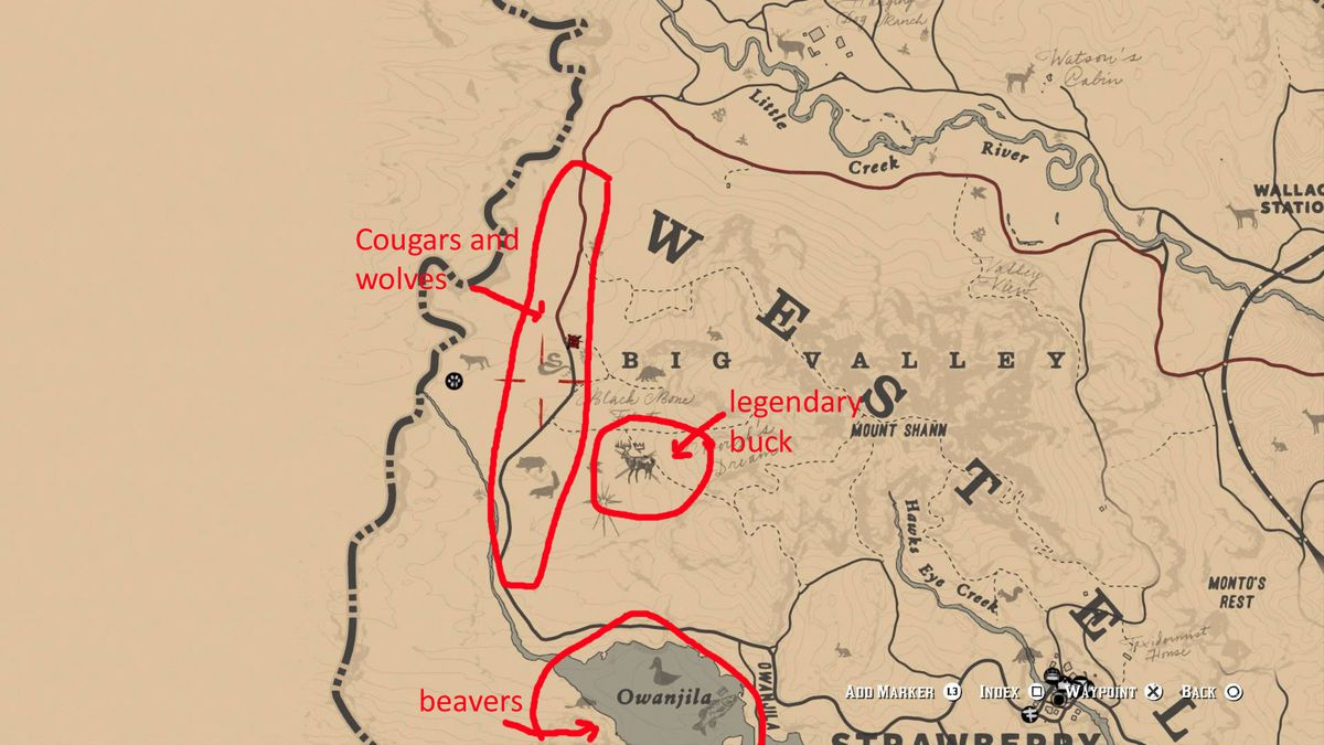 Red Dead Redemption 2 - in-game map showing where to find cougars, wolves, beavers and the Legendary Buck