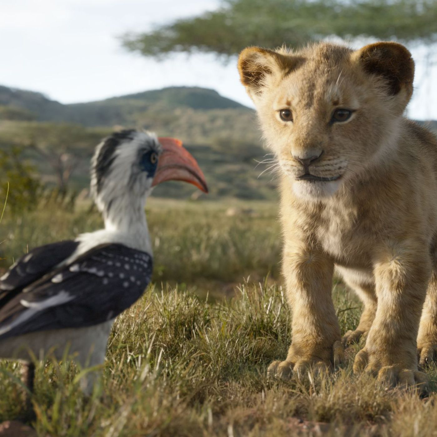 Is Disney S New Lion King Remake Live Action Or Animated Vox