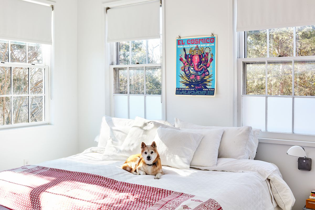 A bedroom. There is a large bed with white bed linens and a red and white patterned blanket. A brown and white dog sits on the bed looking at the camera. There are multiple windows overlooking trees. A colorful poster hangs over the bed.