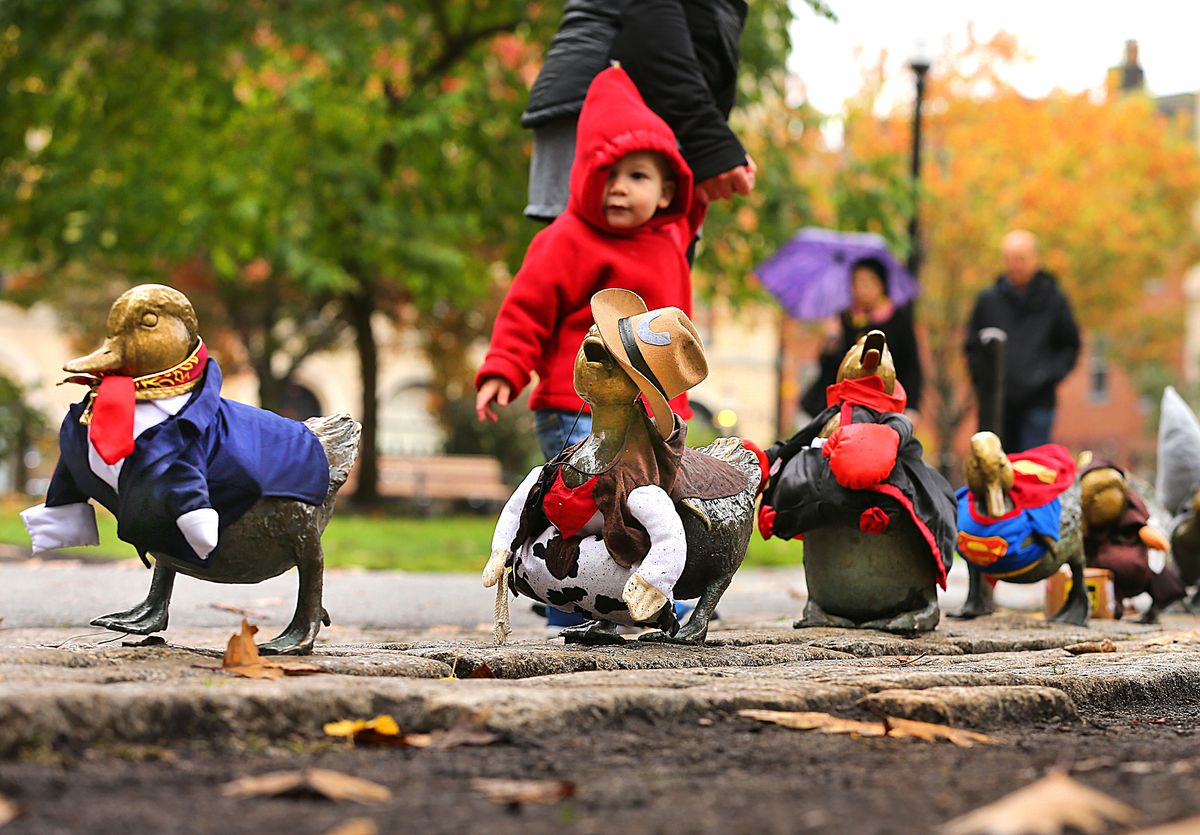 A child in a hoodie in front of small bronze statues of ducks and ducklings in a city park.
