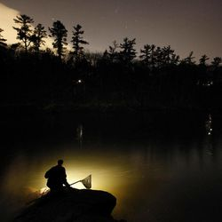 In this photo made Thursday, March 23, 2012, Bruce Steeves uses a lantern while dip netting fort elvers on a river in southern Maine. Elvers are young, translucent eels that are born in the Sargasso Sea and swim to freshwater lakes and ponds where they grow to adults before returning to the sea.