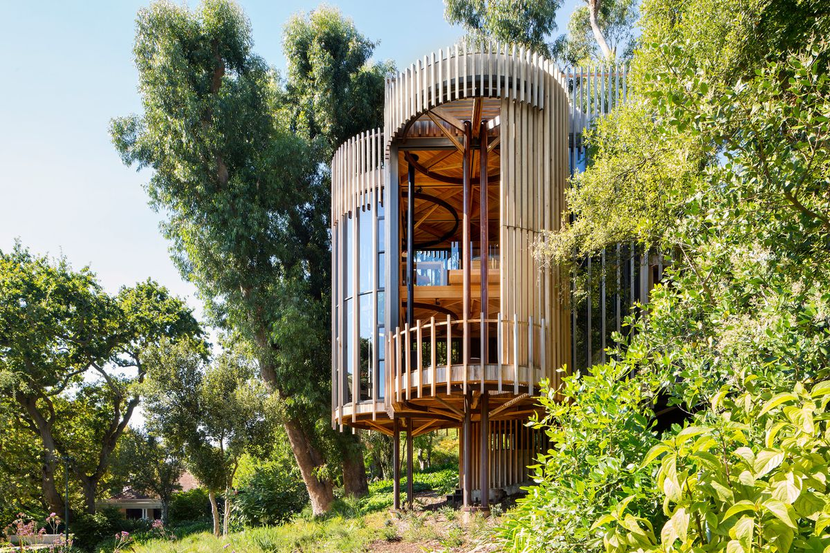 Home on stilts comprising four cylindrical volumes clad in timber slats and windows rises among lush, sloped site.