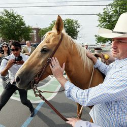 Gov. Spencer Cox gets to know his horse as and first lady Abby Cox prepare to help drive a small herd of Texas longhorn cattle from West High School towardthe Utah State Fairpark in Salt Lake City on Monday, July 19, 2021. The drive was held to celebrate the return of the Days of '47 Cowboy Games and Rodeo.