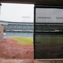 Through the knothole. Field looks surprisingly good