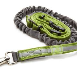 """The <strong>OllyDog</strong> Mt. Tam Hands-Free Dog Leash, <a href=""""http://www.rei.com/product/823441/ollydog-mt-tam-hands-free-dog-leash"""">$27</a> at REI, is a lifesaver for the friend that likes to jog with the pooch. It also works for the friend that li"""