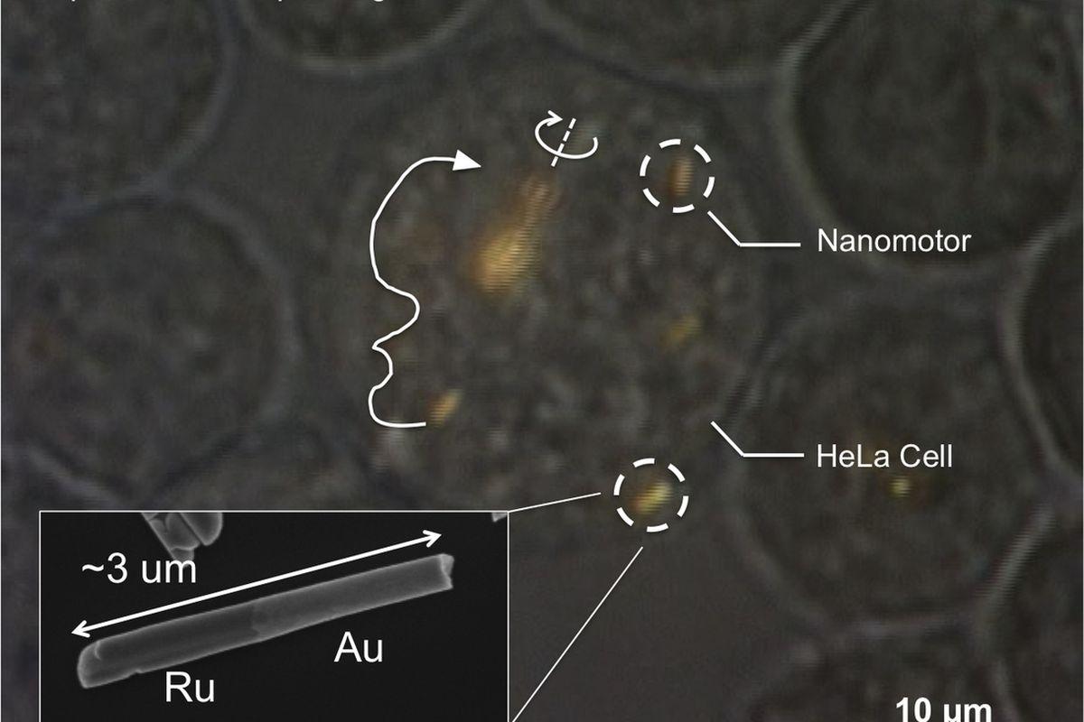 nanomotors penn state