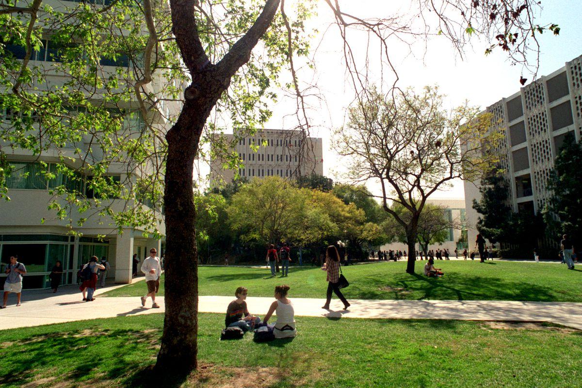 Columbia University hook up mondo di Warcraft Dating sito gratuito