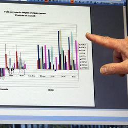 Dr. Lucinda Bateman points to a graph that shows gene expression changes of a person with chronic fatigue syndrome following an exercise stresser, right, as compared to a person without the condition at left, in Dr. Bateman's office in Salt Lake City, Thursday, May 15, 2014.