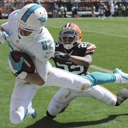 Sep 8, 2013; Cleveland, OH, USA; Miami Dolphins wide receiver Brian Hartline (82) grabs a 34-yd touchdown pass ahead of the defense of Cleveland Browns cornerback Buster Skrine (22) during the third quarter at FirstEnergy Stadium.
