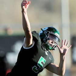 Provo and Timpview play in quarterfinal football action in Provo on Friday, Nov. 8, 2019. Timpview won 26-7.