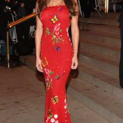 Long before she got Lachey'd, former VJ Vanessa Minnillo enjoyed a solo night out at the Met Gala in 2005.