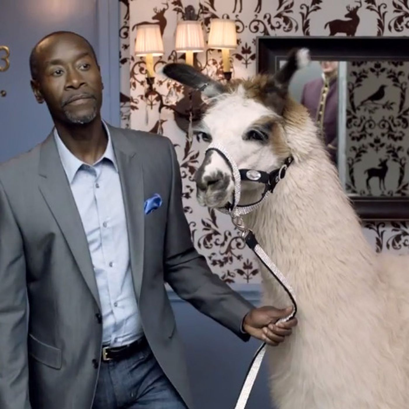 2014 super bowl commercial table tennis arnold schwarzenegger don 2014 super bowl commercial table tennis arnold schwarzenegger don cheadle a llama and twins silver and black pride aloadofball Choice Image
