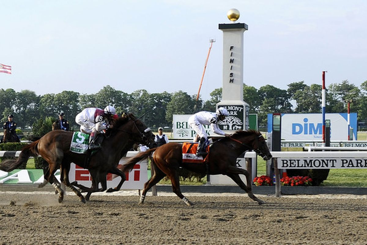 ELMONT, NY - JUNE 05:  Drosselmeyer, with Mike Smith aboard, wins the 142nd Running of the Belmont Stakes in front of Fly Down, with John Velazquez aboard at Belmont Park on June 5, 2010 in Elmont, New York.  (Photo by Jeff Zelevansky/Getty Images)
