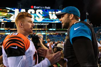 ... Bengals vs Jaguars Behind Enemy Lines with Big Cat Country ... 2fa2e4b03