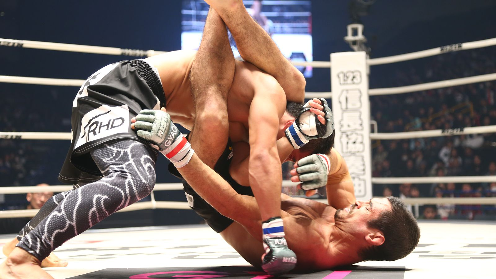 Kron Gracie hopes for quick return after Rizin win