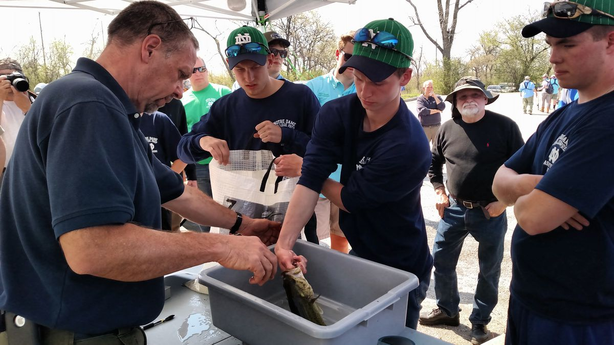 Notre Dame had lively fish to weigh in too at the Skokie Lagoons sectional.<br>Credit: Dale Bowman