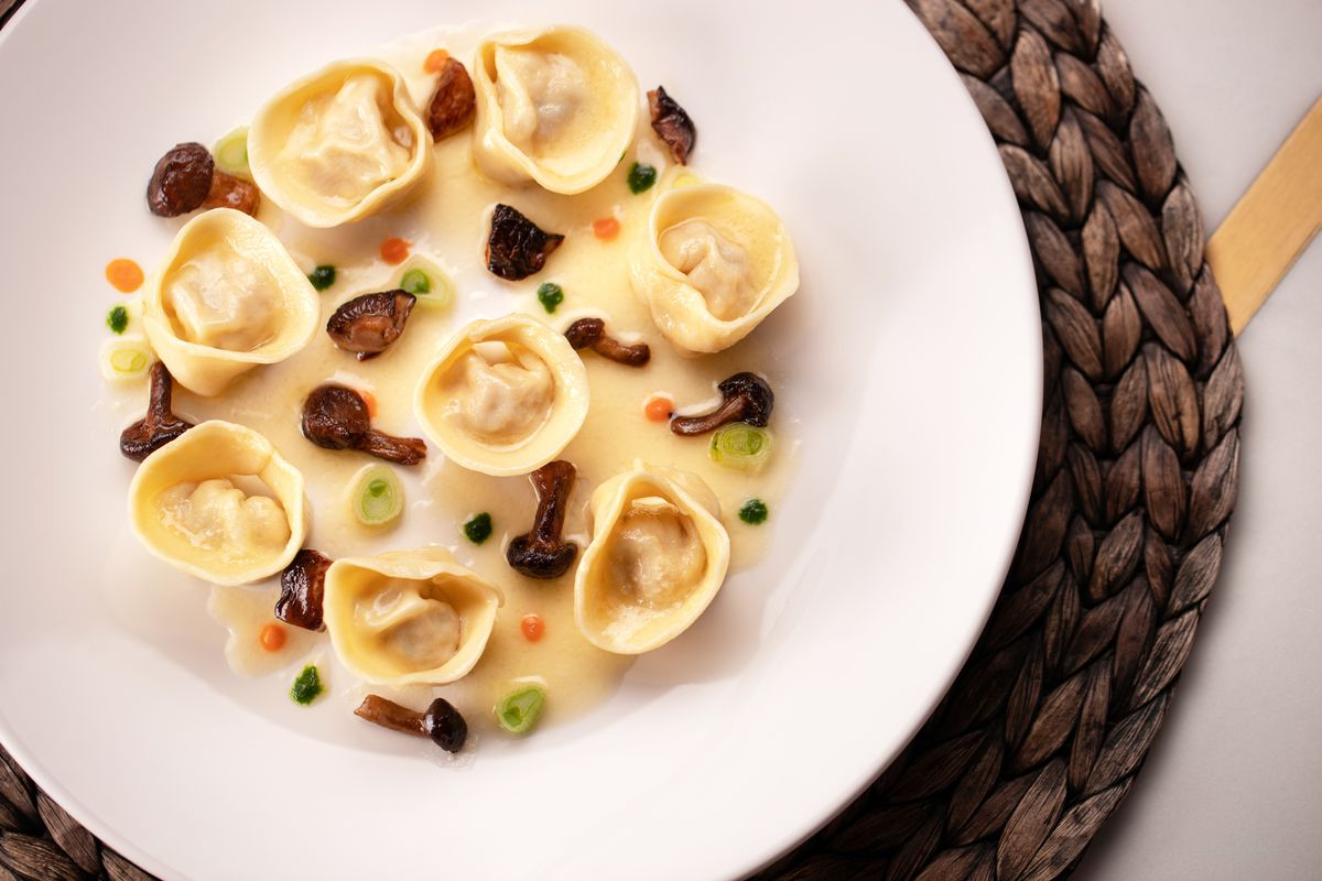 A white plate with tortelli in a white sauce with mushrooms