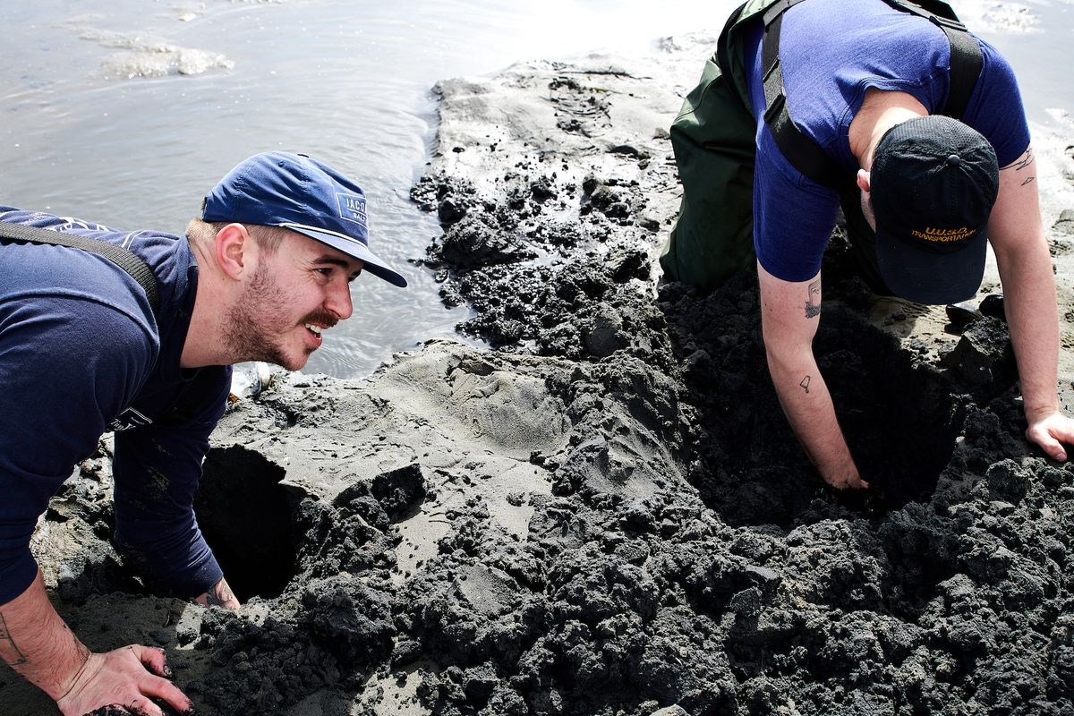 Chefs Jacob Harth and Nick Van Eck stick their arms in holes in the sand