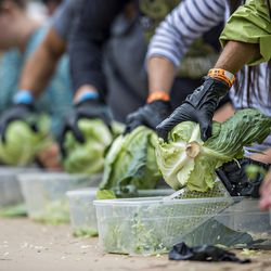 The cabbage shredding competition during Chomp & Stomp in Cabbagetown on Saturday.