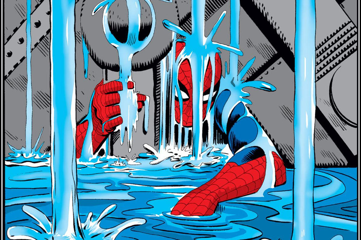 comic artist steve ditko the co creator of spider man and doctor