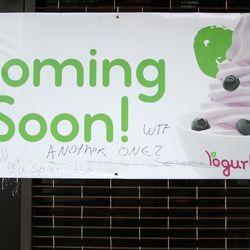 """Yes, another one, via <a href=""""http://www.fuckedinparkslope.com/home/so-yeah-everyone-is-pretty-excited-about-the-new-yogurtland.html"""">FiPS</a>."""