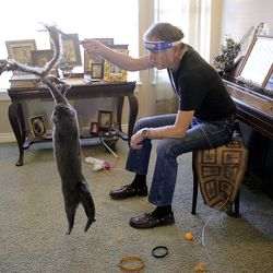 Doug Thom plays with his rescued cat Bleau le Beare at home in Draper on Monday, July 13, 2020. Salt Lake and Washington counties are not accepting stray cats unless they're hurt or obviously abandoned.