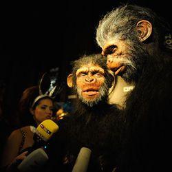 That's Heidi Klum and Seal dressed as monkeys.