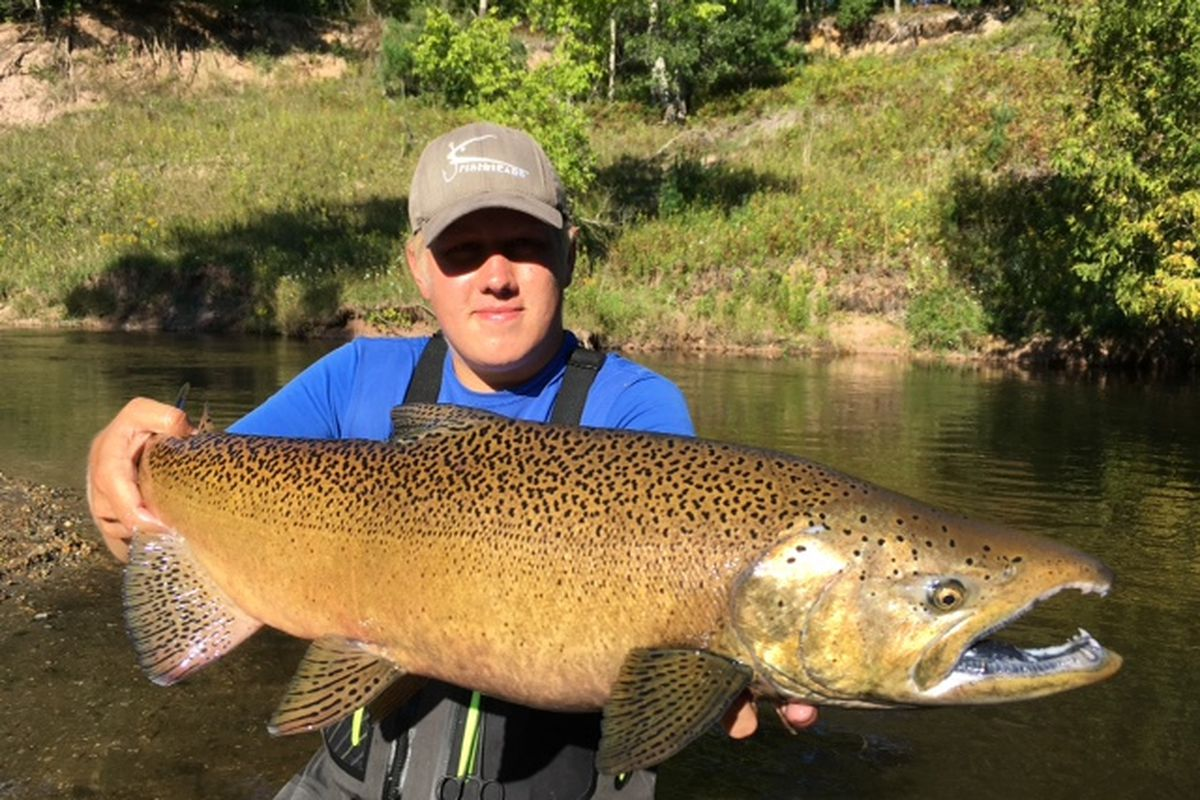Fall kings keep surprising: Royal joys of Chicago fishing