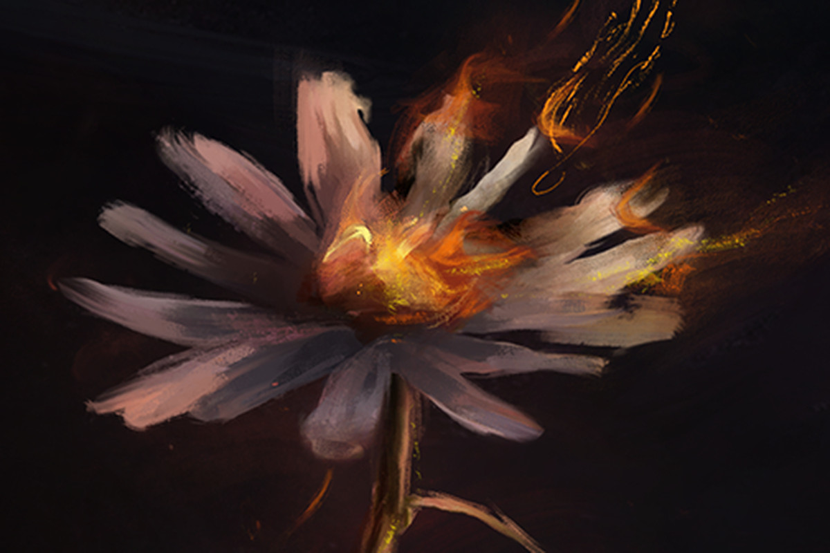 A Flower Image Hints At Annie Lore Changes Video Clip Teased