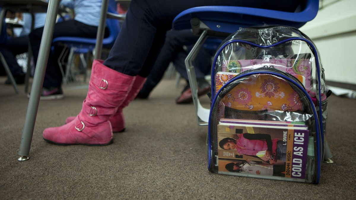 Interest in clear backpacks has surged following the mass shooting at  Marjory Stoneman Douglas High School in Parkland e69fe0d8b7729