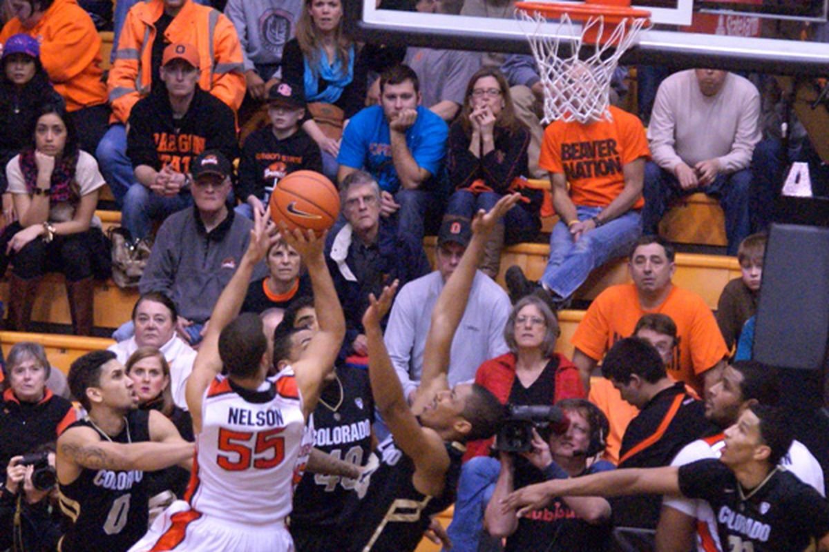 What do we expect from Oregon St. as hoops season gets underway?