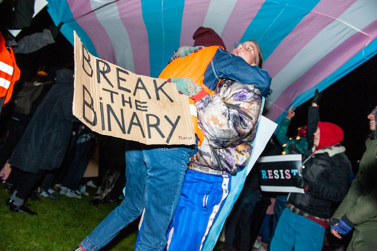 """Two people embrace under a pink, white, and blue trans rights flag. One holds a sign reading, """"Break the binary."""""""